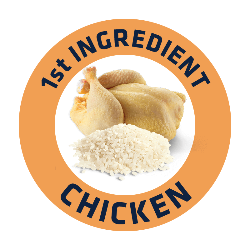 CHICKEN%20%26%20RICE%402x.png