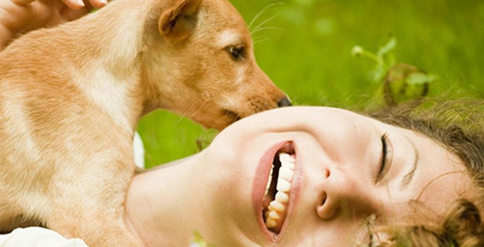 Этология или как научиться понимать животных