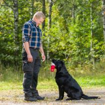 Comment choisir un bon éducateur canin?