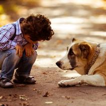 As crianças precisam de animais de estimação