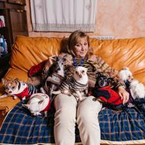 El hada madrina de las perras