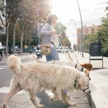 Paula y el amor incondicional por su familia canina