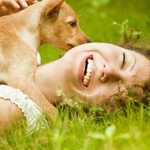 Etologia o com entendre els animals