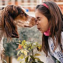 Gossos i gats, carn i ungla