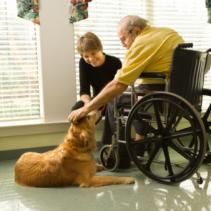 Perros en residencias de ancianos