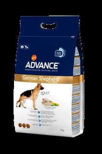 German Shepherd (Adult +2 years)