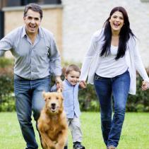 Estàs a punt per adoptar una mascota?