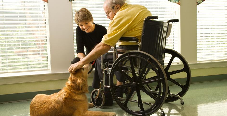 Cani nelle case di riposo per anziani
