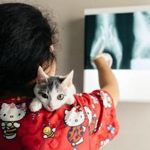 María Victoria, una veterinaria solidaria