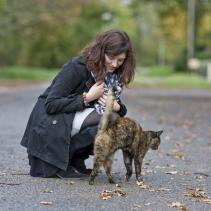 Por que os gatos esfregam-se nas pernas de seus proprietário?