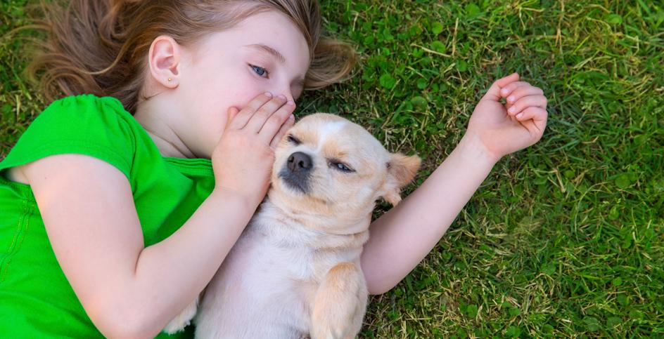 La contribution d'un animal de compagnie au développement de l'enfant