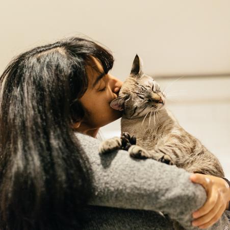 cuando vives lejos de tu país, tus mascotas pueden convertirse en tu familia