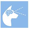Auxilia o desenvolvimento do cérebro e da visão
