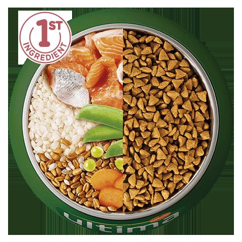 Salmón, arroz, cereales integrales y verduras