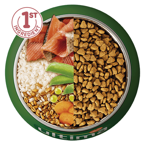 Trout, rice, wholegrain cereals and vegetables