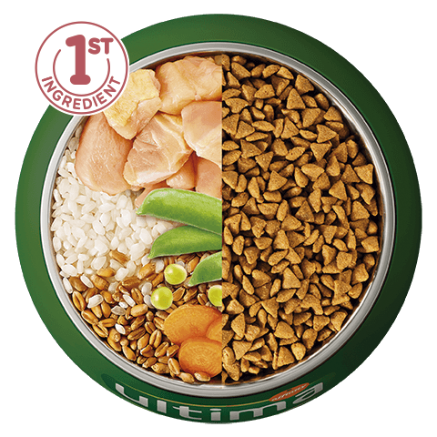 Chicken, rice, wholegrain cereals and vegetables