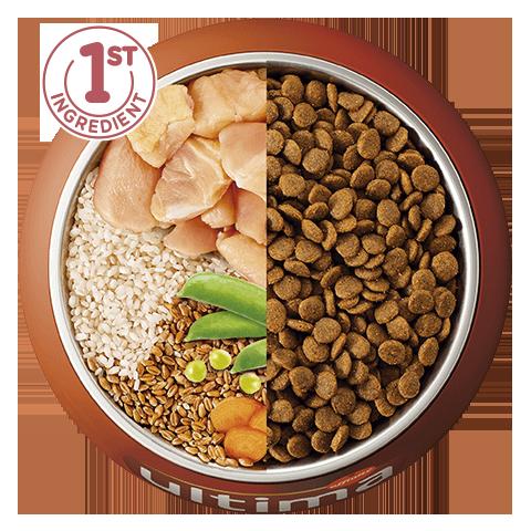 Pollo, riso, cereali integrali e verdure