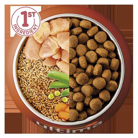 Pollo, cebada, cereales integrales y verduras