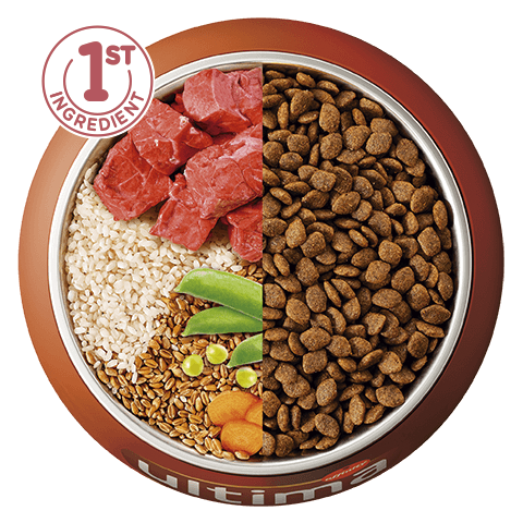 Buey, arroz, cereales integrales y verduras
