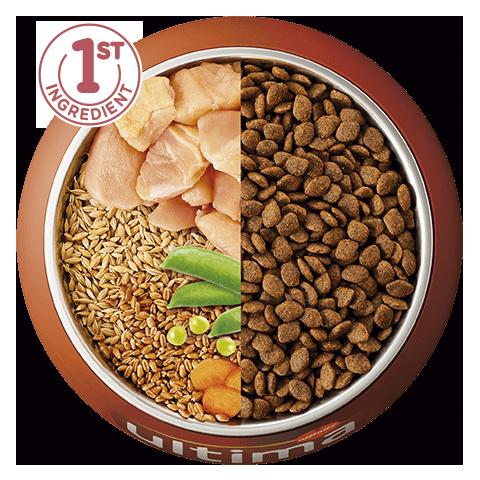 Poulet, orge, céréales complètes et légumes