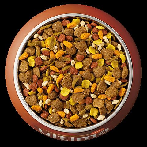 Au poulet, aux céréales complètes, aux carottes, aux haricots verts, à la pomme, et au riz