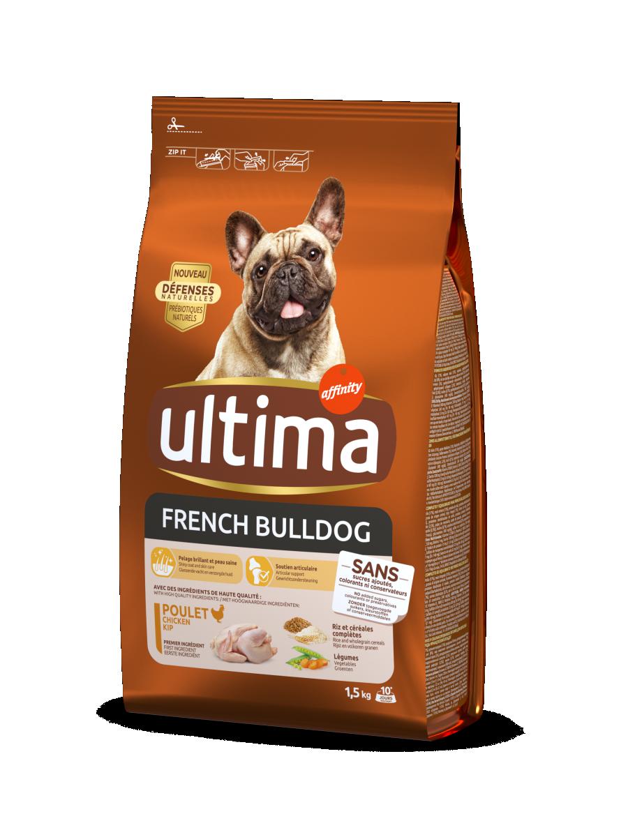 Mini French Bulldog con Pollo