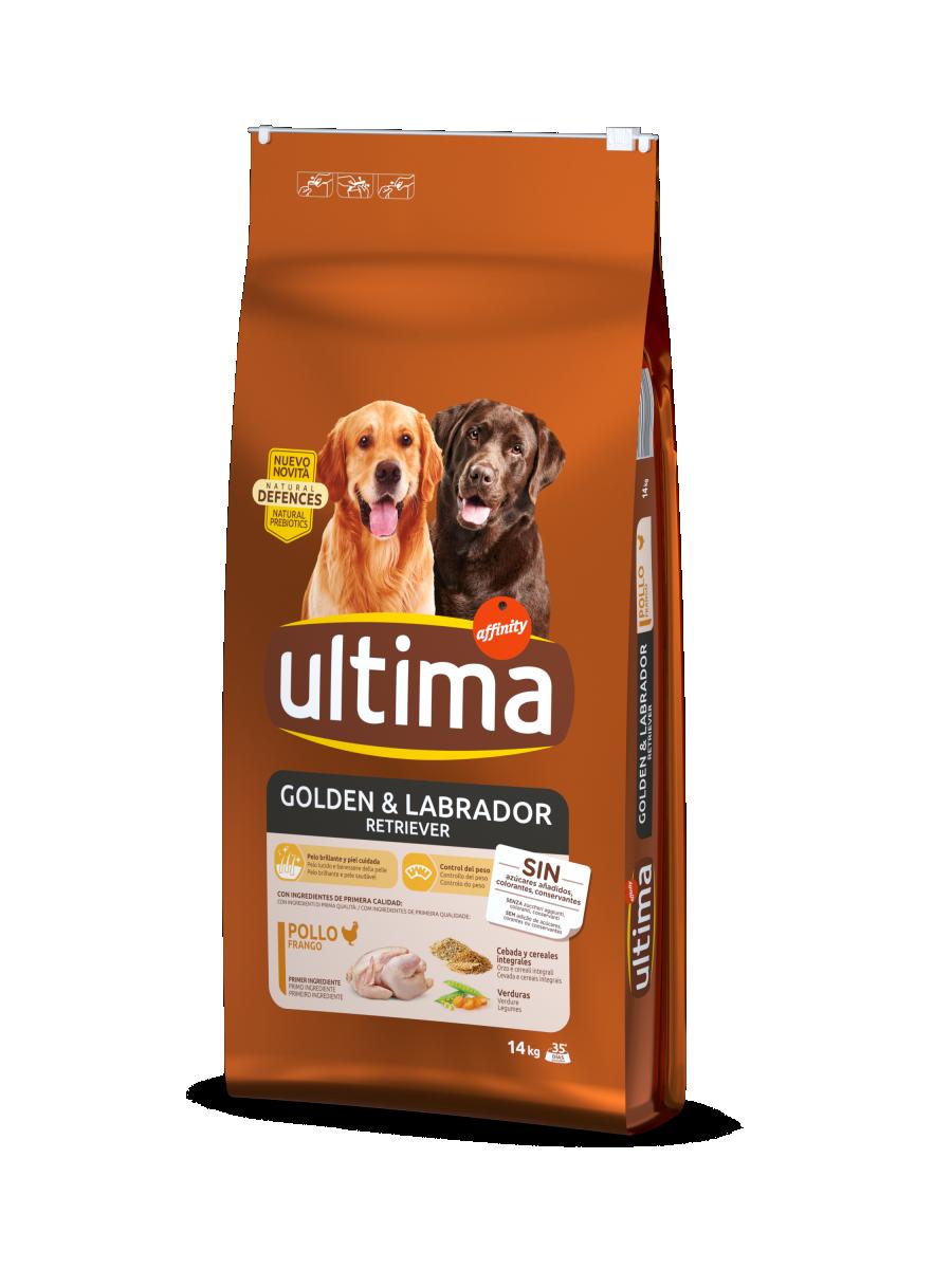 Medium-Maxi Golden i Labrador amb Pollastre