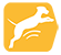 icons_6530_ultima_ultima-dog-condicion-fisica-ideal-medium-maxi_3.png