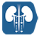 icons_6513_ultima_ultima-cat-funcion-renal_0.png