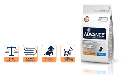 Banner Información técnica de productos