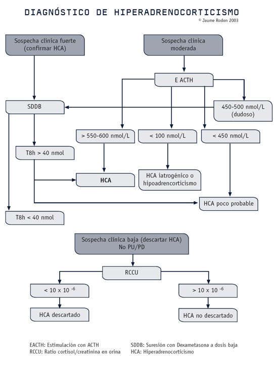 Diagnóstico de hiperadrenocorticismo